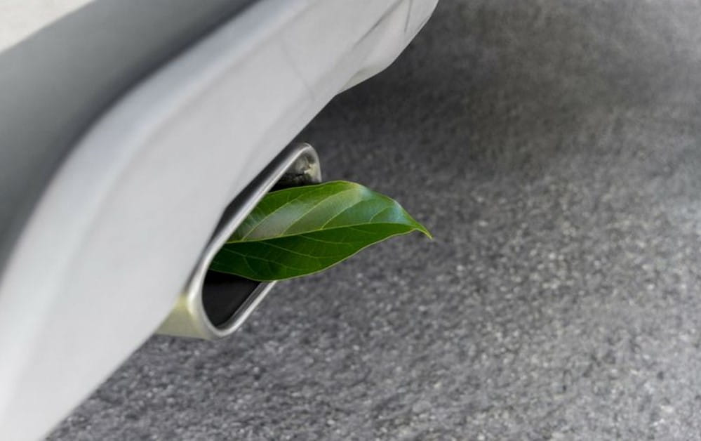 Vehicle Exhaust with Leaf
